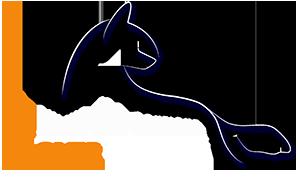 Одежда для собак CoverDog Логотип